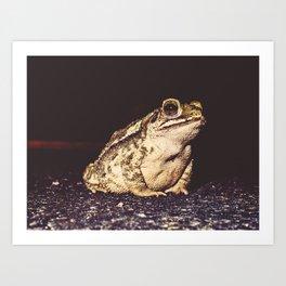 Neighborhood Frog Art Print