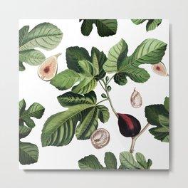 Figs White Metal Print