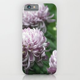 Longwood Gardens Autumn Series 275 iPhone Case