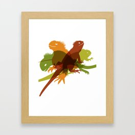 Iguanas Framed Art Print