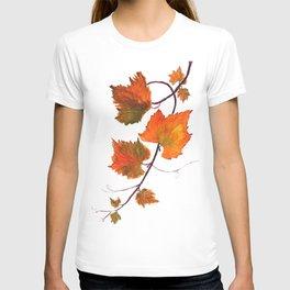 grapevine in autumn T-shirt
