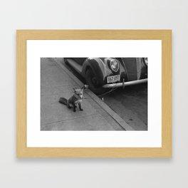Ford Fox Framed Art Print