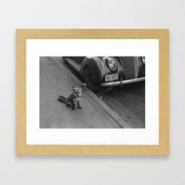 Ford Fox Framed Art Print