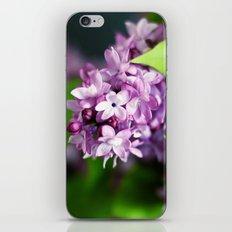 fresh lilacs iPhone & iPod Skin