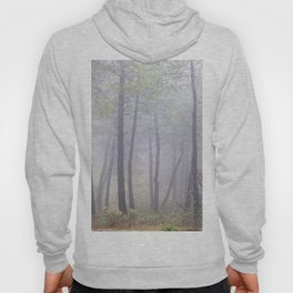 """Deep forest"". Into the foggy woods.... Hoody"