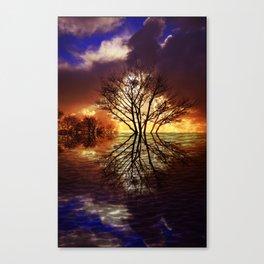 Night stream Canvas Print