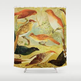 Amazonian Birds by Göldi & Emil August Belem Brazil Colorful Tropical Birds Scientific Illustration Shower Curtain