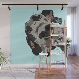 Great Dane in your face (teal) Wall Mural