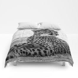 B&W Cheetah Cub 4 Comforters