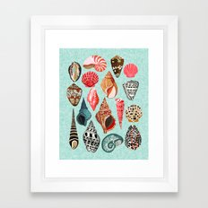 Seashells ocean nautical beach seaside children kids baby home dec shell illustration Andrea Lauren Framed Art Print