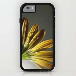 simple beauty. iPhone Case