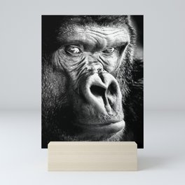 Gorilla, Cover Shot, Mini Art Print