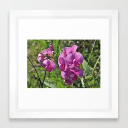 Small Flowers Framed Art Print