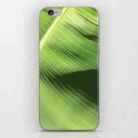 banana leaf iPhone & iPod Skins featuring Banana Leaf by Glenn Designs