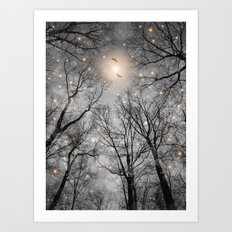 Nature Blazes Before Your Eyes 2 (Ash Embers) Art Print