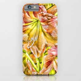 Vibrant abstract Amaryllis iPhone Case