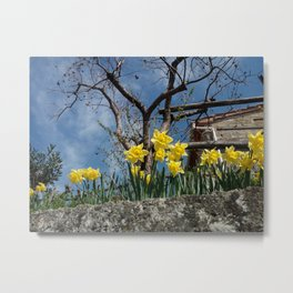 Yellow flowers in a house - Italy Metal Print