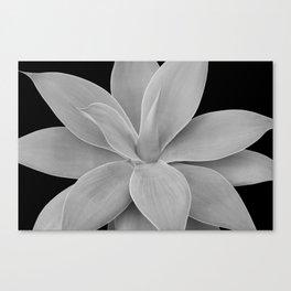 Gray Black Agave Romance #1 #tropical #decor #art #society6 Canvas Print