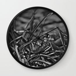 Lurking Wall Clock