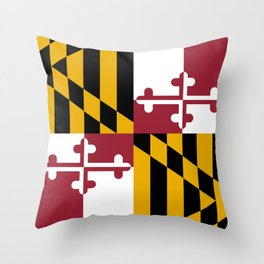 state north gifts s pillows carolina sew pillow it university products nc wright