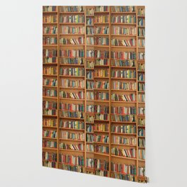 Bookshelf Books Library Bookworm Reading Wallpaper