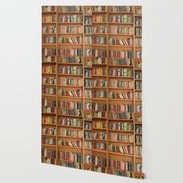 Bookshelf Books Library Bookworm Reading Wallpaper