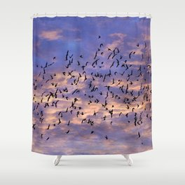 Flight of the Black Birds Shower Curtain