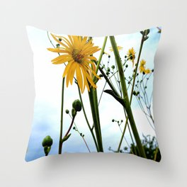 Seeded Tshirts Throw Pillow