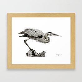 Daniel Adams Oil Painting Great Blue Heron Framed Art Print