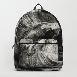 Etched by Nature Scarred by Man bw Backpack