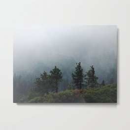 Foggy Trees in Emerald Bay Metal Print