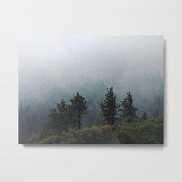 Foggy Trees in Emerald Bay Metal Print