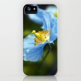 Blue Himalayan Poppy iPhone Case