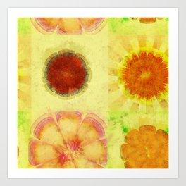 Hyperaeolism Content Flowers  ID:16165-130047-55630 Art Print
