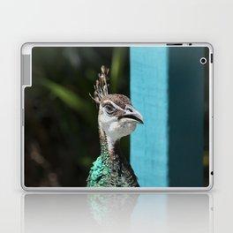 Peacock Hen Laptop & iPad Skin