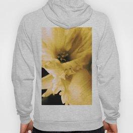 Golden Spring Hoody