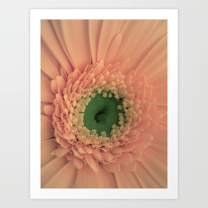 Peach Love Art Print