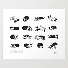Sleeping Boogie Art Print