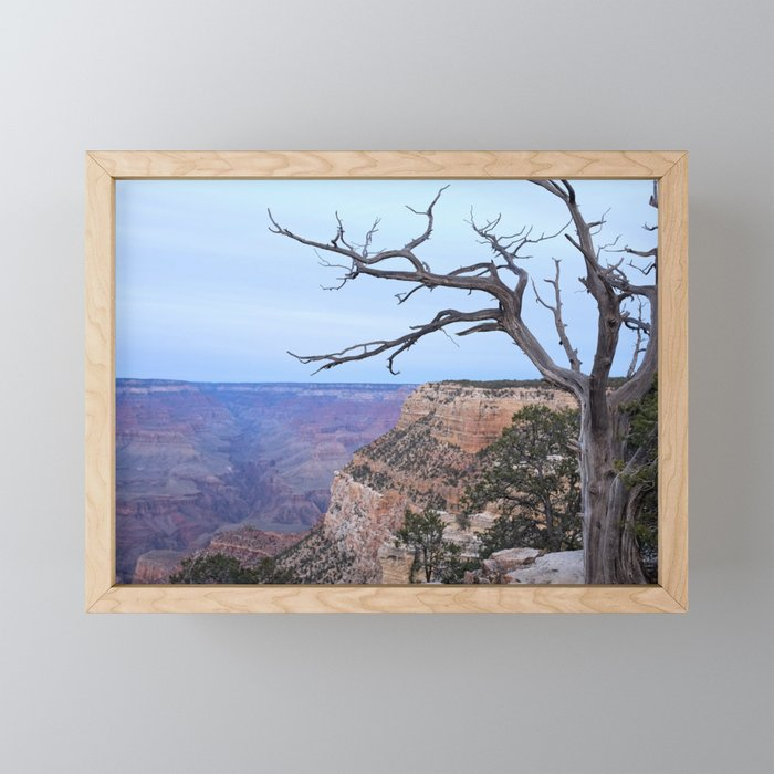 Grand Canyon #17 Framed Mini Art Print