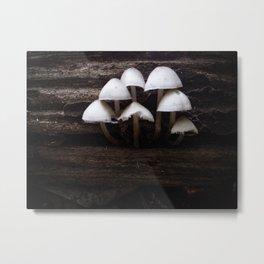 Mushrooms On a Log Metal Print