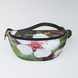 Plumb Blossoms Fanny Pack