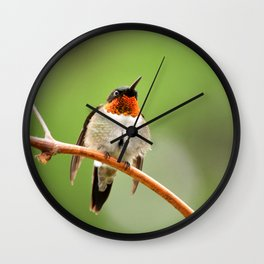 Hummingbird XVII Wall Clock