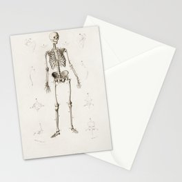 Human skeleton illustrated by Charles Dessalines D' Orbigny (1806-1876) Stationery Cards