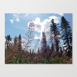 Reach the Sky Canvas Print