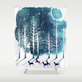 Winter Night 2 Shower Curtain