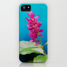 Tropical Blue 2 iPhone Case