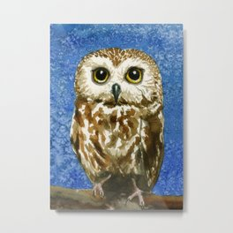 A Saw Whet Owl Metal Print