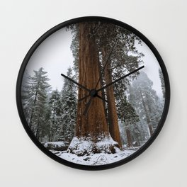 Winter in the Giant Forest Wall Clock