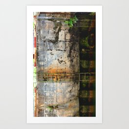 The Side of the Wasteland Art Print