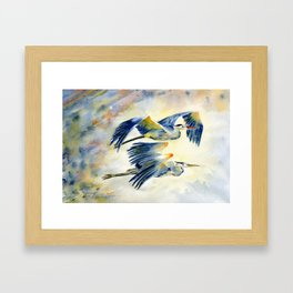 Flying Together - Great Blue Heron Framed Art Print